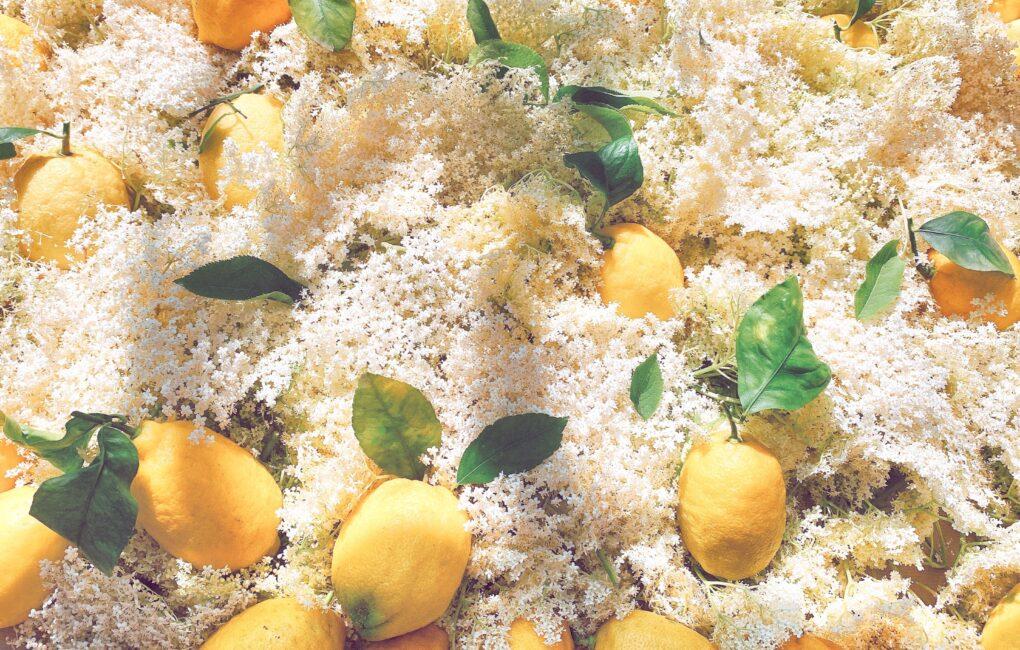 Limoni e Sambuco